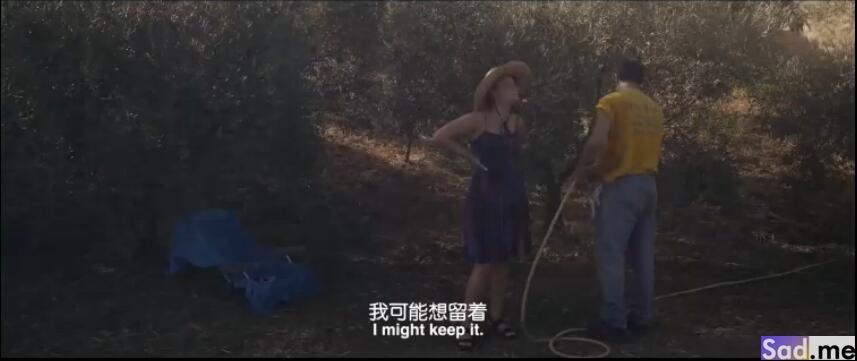 图片[7]-[欧美][喜剧]《油画》[中文字幕][1080P][西班牙同性恋上表兄]-S站 (〃∇〃) 追彩虹的人~-Sad.me