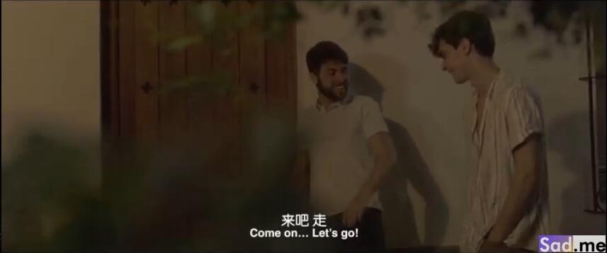 图片[6]-[欧美][喜剧]《油画》[中文字幕][1080P][西班牙同性恋上表兄]-S站 (〃∇〃) 追彩虹的人~-Sad.me